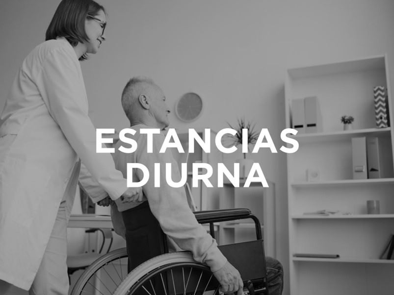 estancias-diurnas